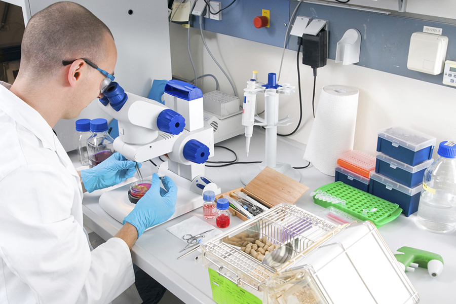 Young scientist  in while lab coat works in the laboratory